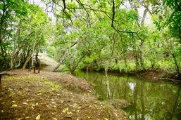 Rio Palmar Balneario